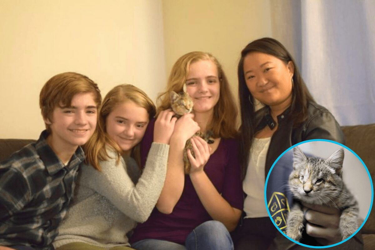 Blind kitten who was abandoned in a pile of trash, finds her fur-ever home with a family of adopted kids.